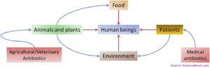 Interplay of antibiotic resistance and food-associated stress tolerance in foodborne pathogens