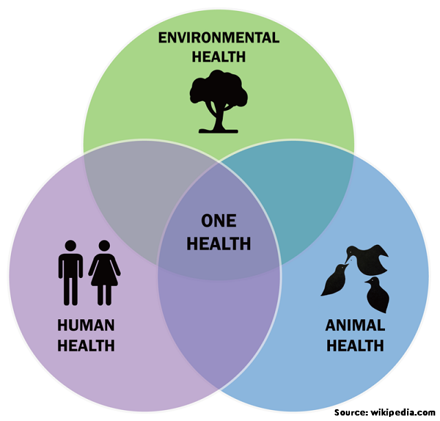 Antimicrobial use in food animals and human health: time to implement 'One Health' approach