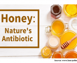 Honey: Another Alternative in the Fight against Antibiotic-Resistant Bacteria?