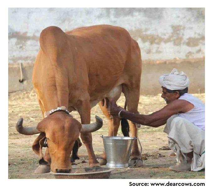 Understanding Antibiotic Usage on Small-Scale Dairy Farms in the Indian States of Assam and Haryana Using a Mixed-Methods Approach—Outcomes and Challenges